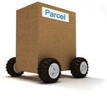 Parcel Baggage Services